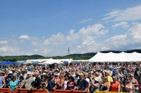 Billtown Blues Festival - Hughesville, PA Jazz Festival